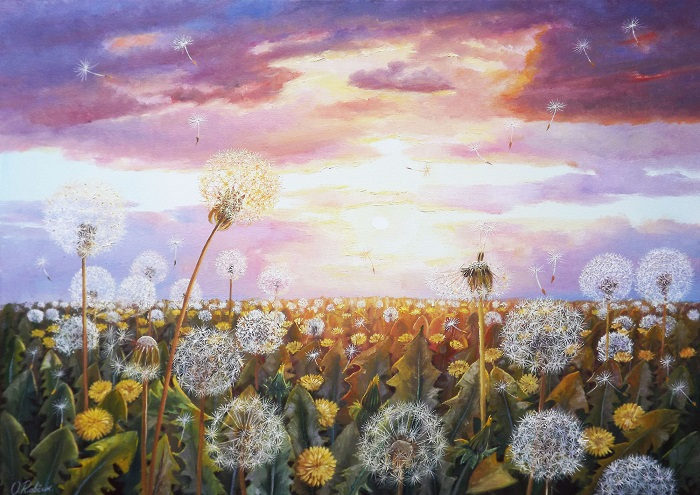 Dandelions in the Sun 3
